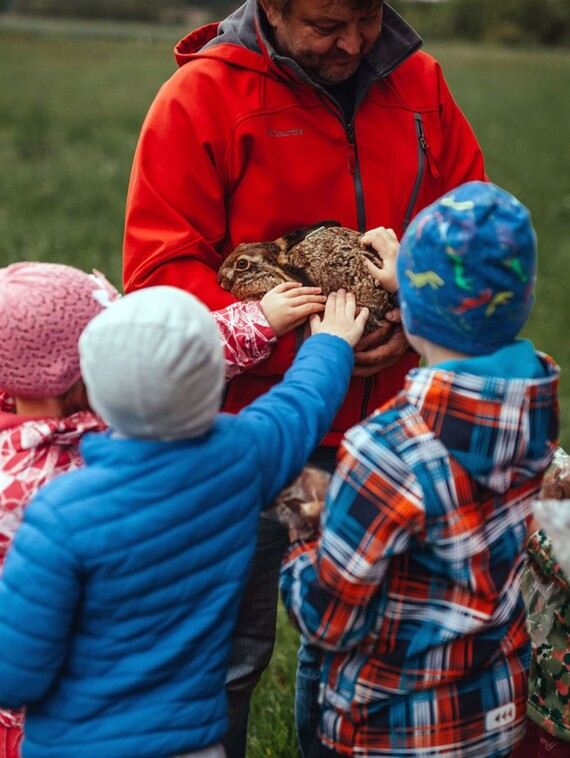 Do české přírody jsme vypustili mladé zajíčky